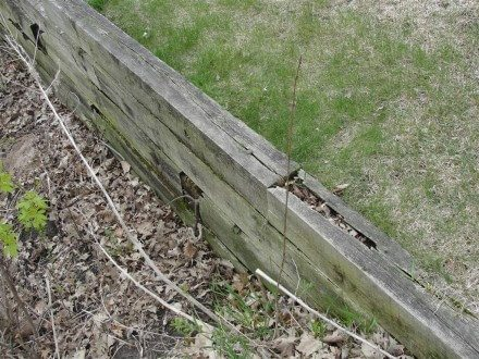 Rotted retaining wall