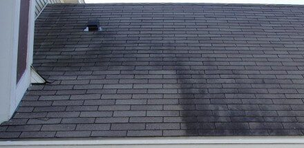 Removing Stains From Asphalt Shingles