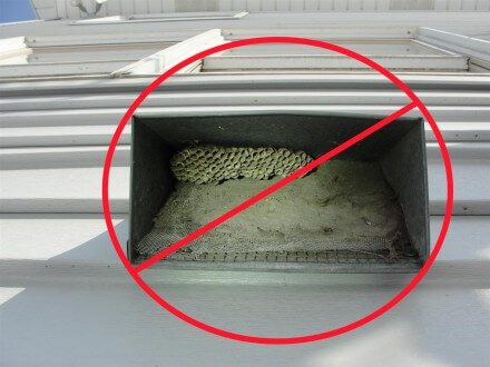 Window screen at combustion air intake