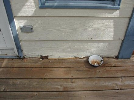 Rotted hardboard siding