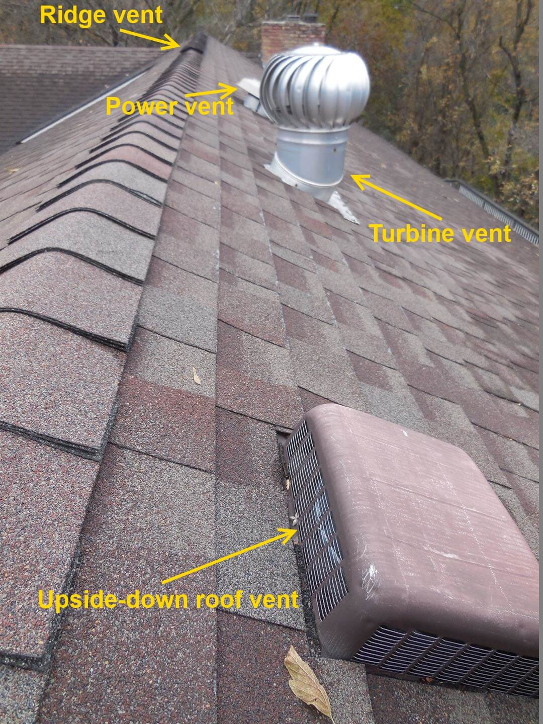 Roof vents problems and solutions for Cupola vent