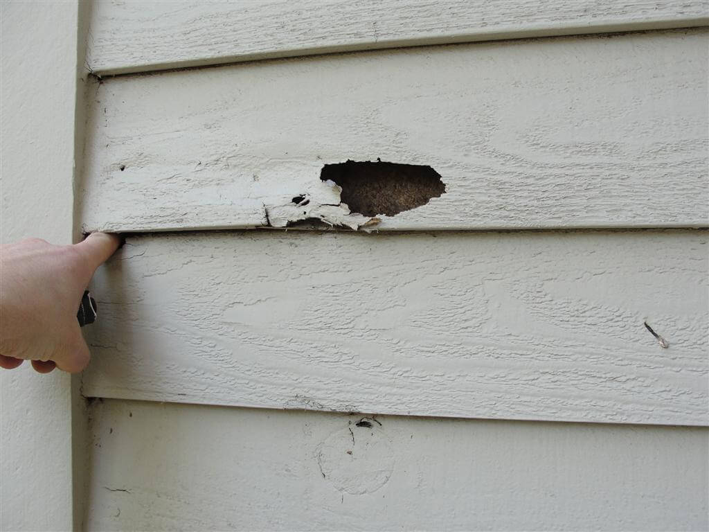 How To Inspect Your Own House Part 3 Siding