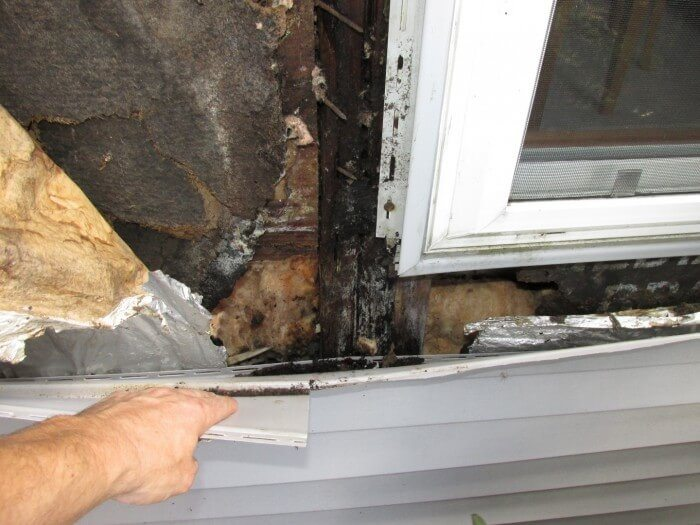 Water damage behind vinyl siding4