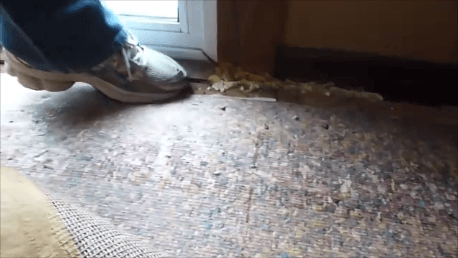 rotted floor