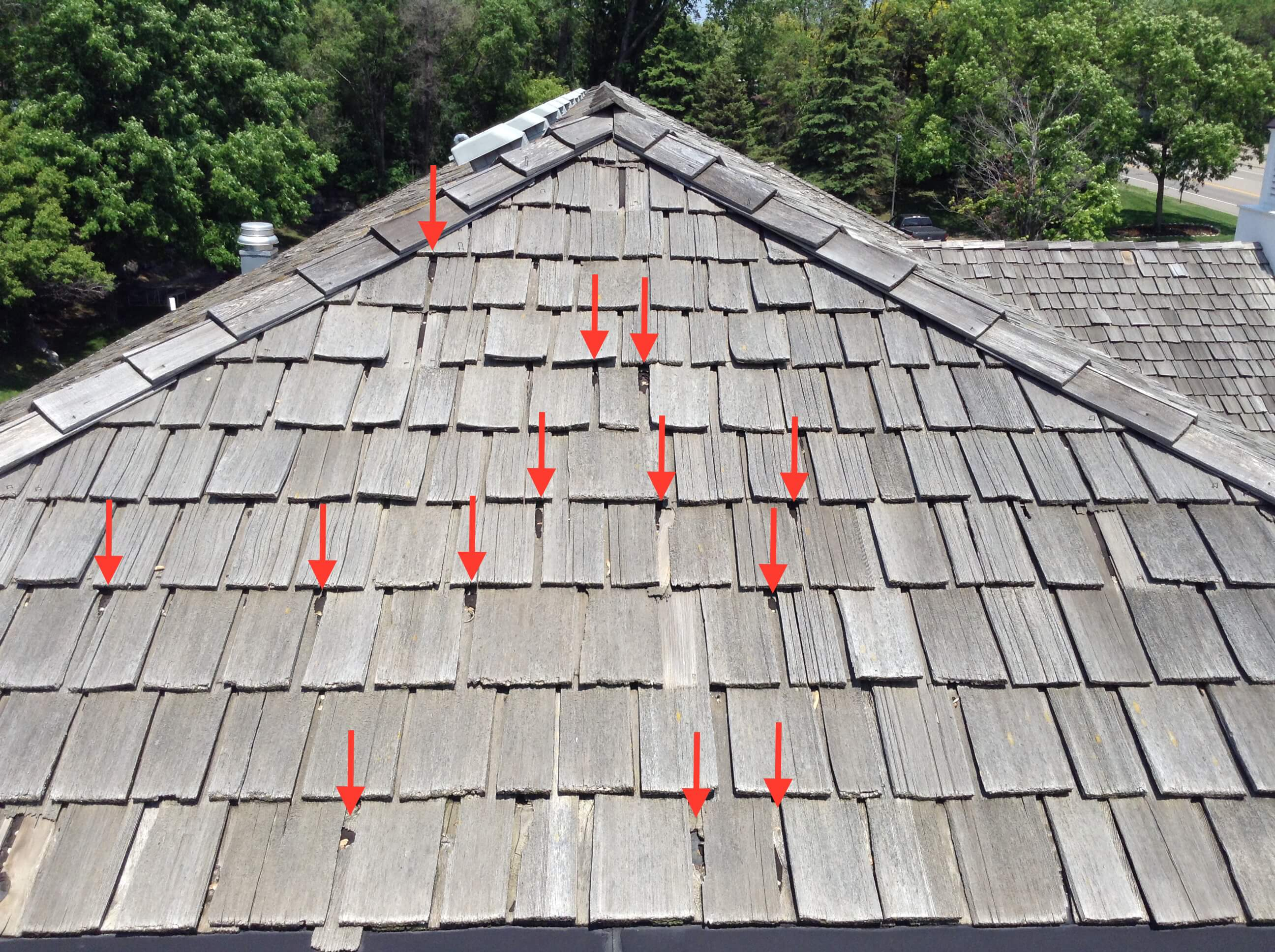 Best cedar shingle protection