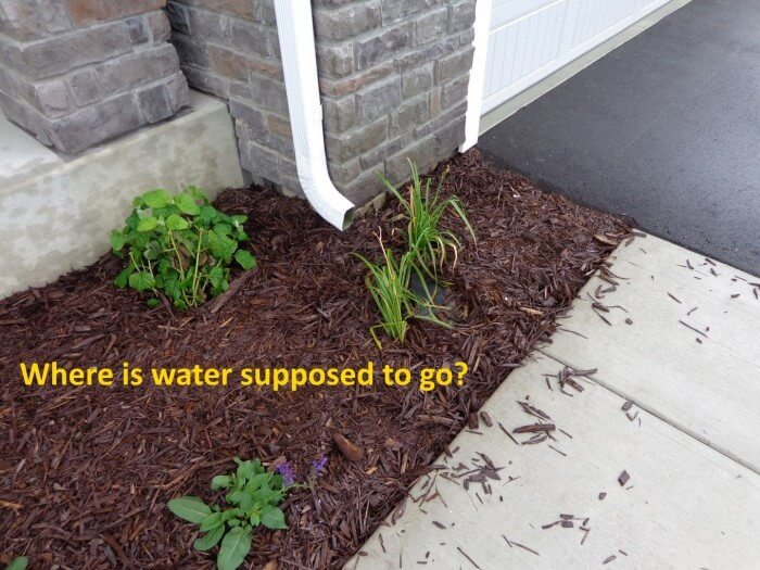 Exterior - poor water management