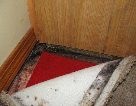 Cover - wet basement