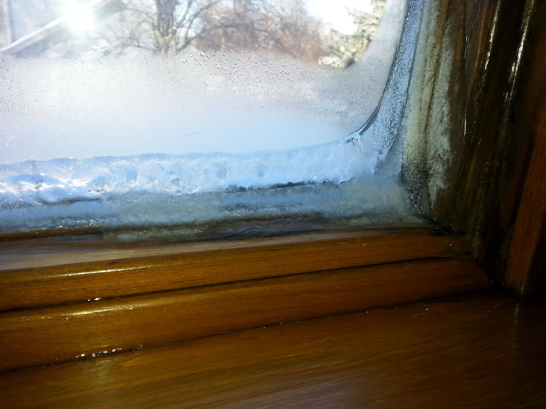 The Typical Ice On Window